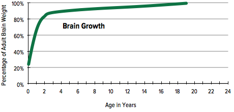 Brain Growth by Age